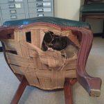 Замена ремней стульев в офисе